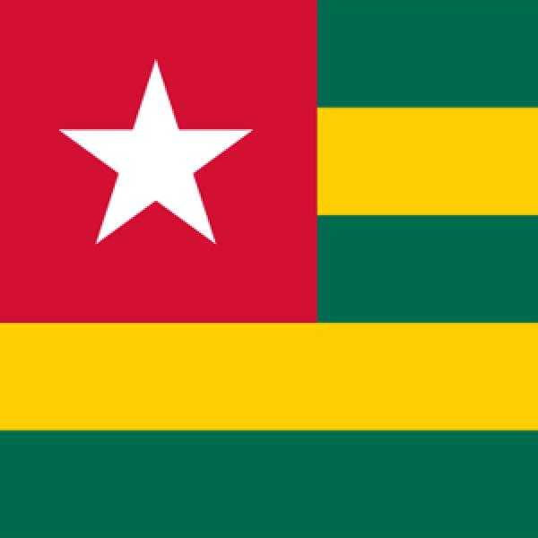 Société Bénino-Togolaise d'ORL et de Chirurgie Cervico-faciale (SOBETORL)