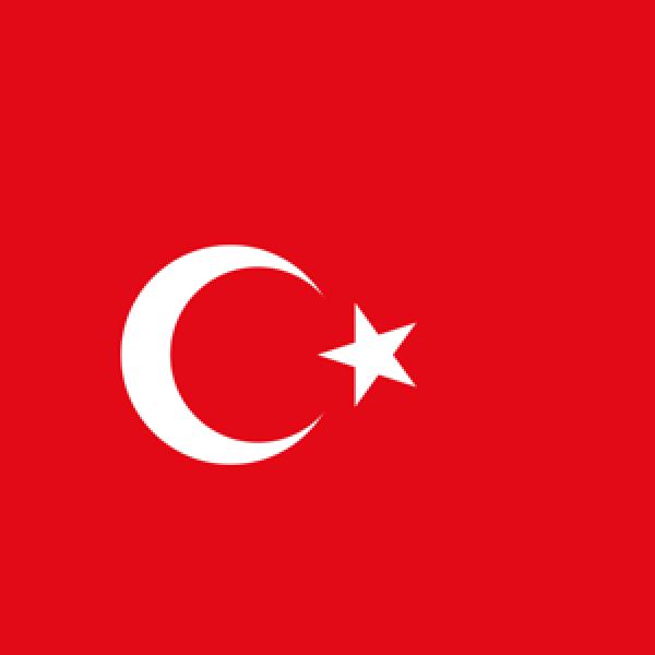 Turkish Society of Otolaryngology - Head and Neck Surgery