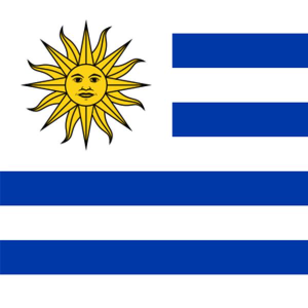 Sociedad ORL del Uruguay