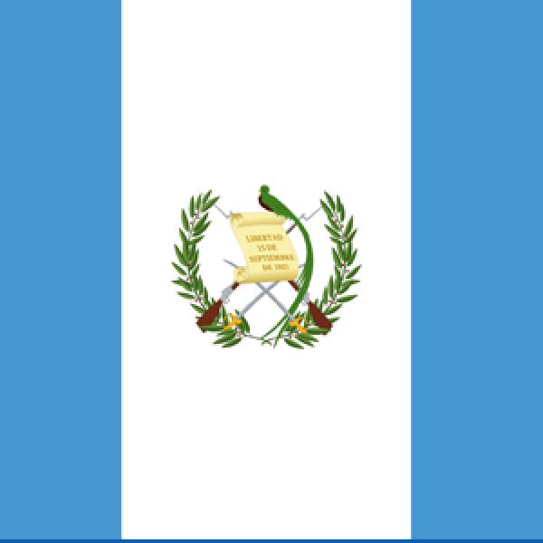 The ORL Society of Guatemala
