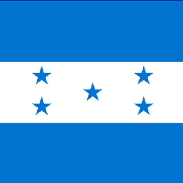 The ORL Society of Honduras