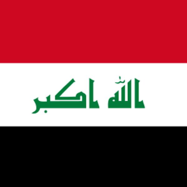 Iraqi Ear, Nose & Throat Society