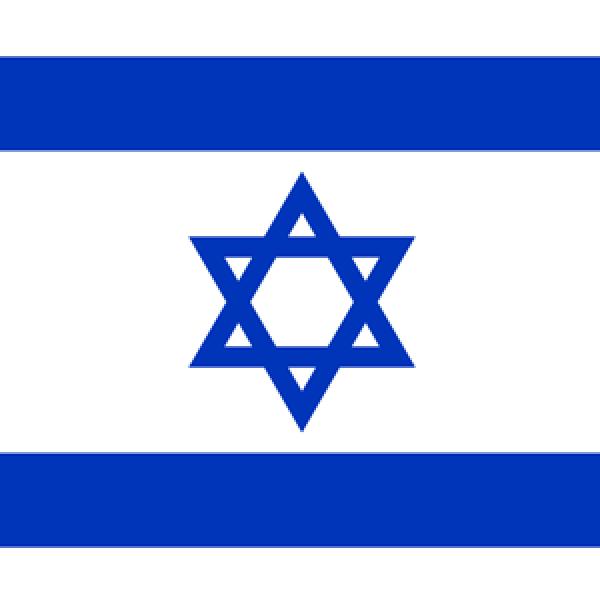 Israeli Society of Otolaryngology/Head & Neck Surgery