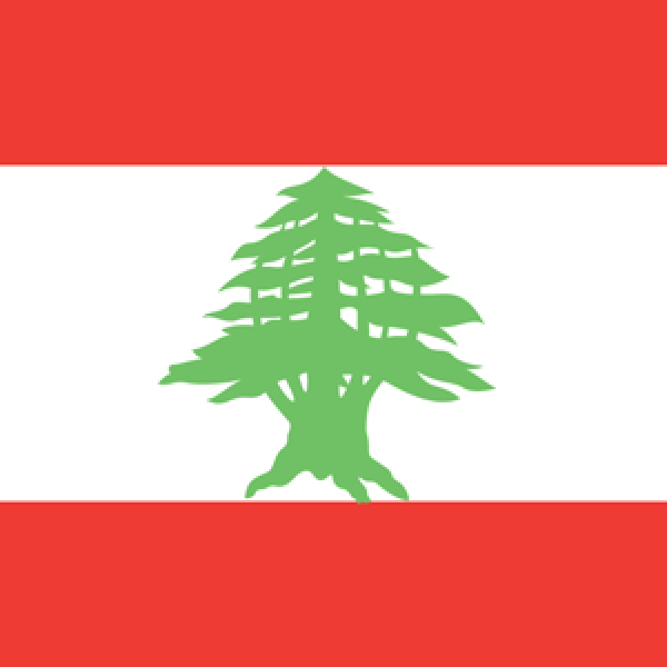 The Lebanese Society of Oto-Rhino-Laryngology and Head and Neck Surgery