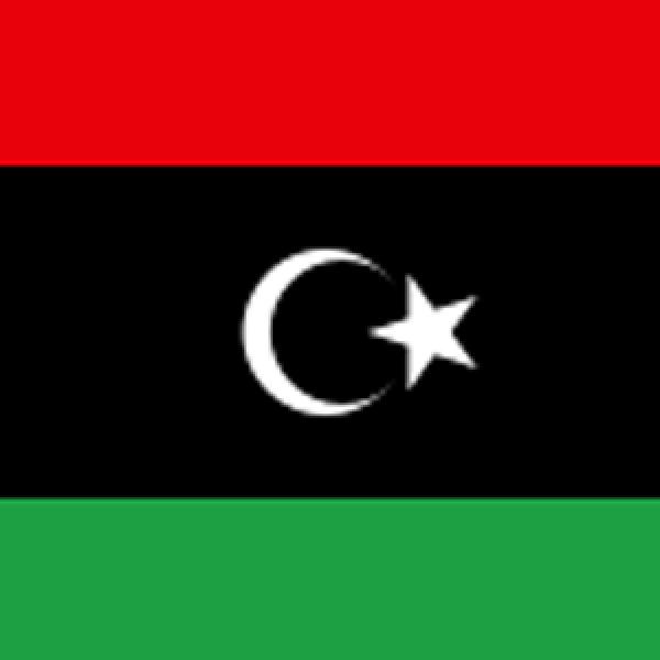 Libyan ORL Society