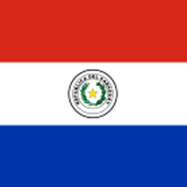 The ORL Society of Paraguay