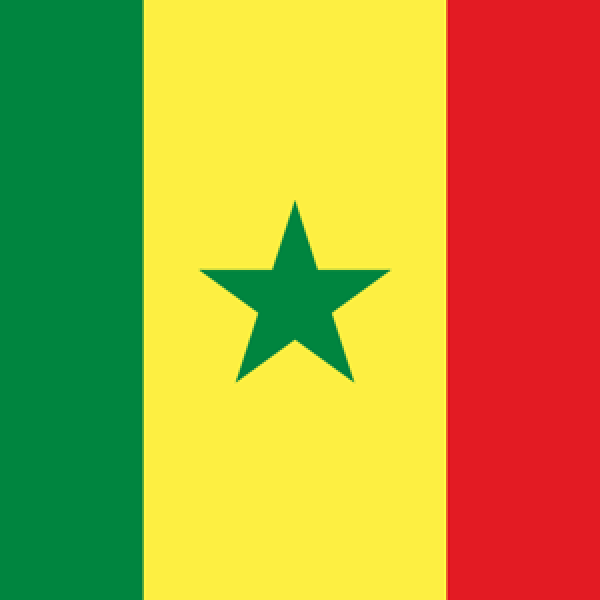 West African Francophone ORL Multinational Group