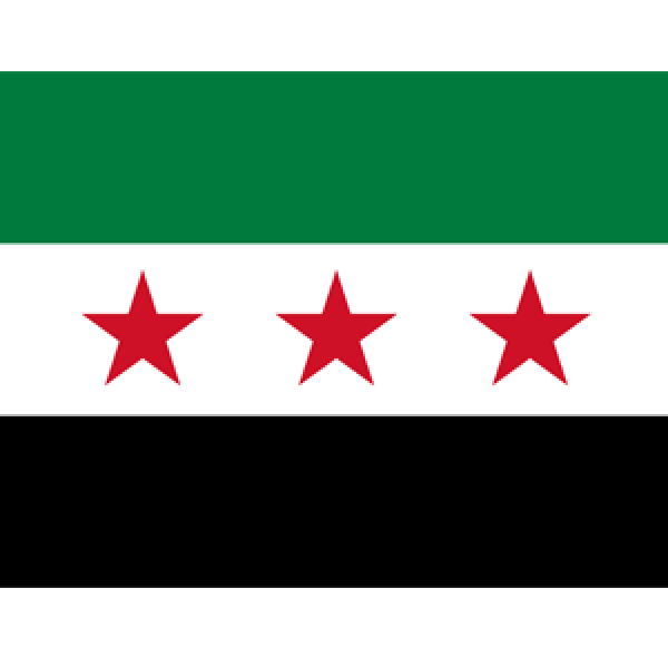 The ORL Society of Syria